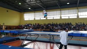 Για πρώτη φορά διασυλλογικοί αγώνες τραμπολίνο από την Α.Ε.Σ.Γ.Β.Ε.